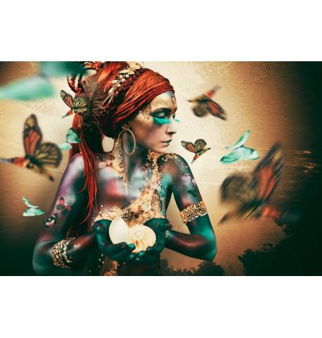 Butterflies Picture